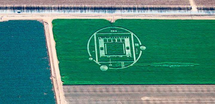 круга на поле