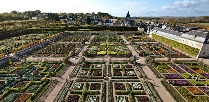 огород замка Villandry
